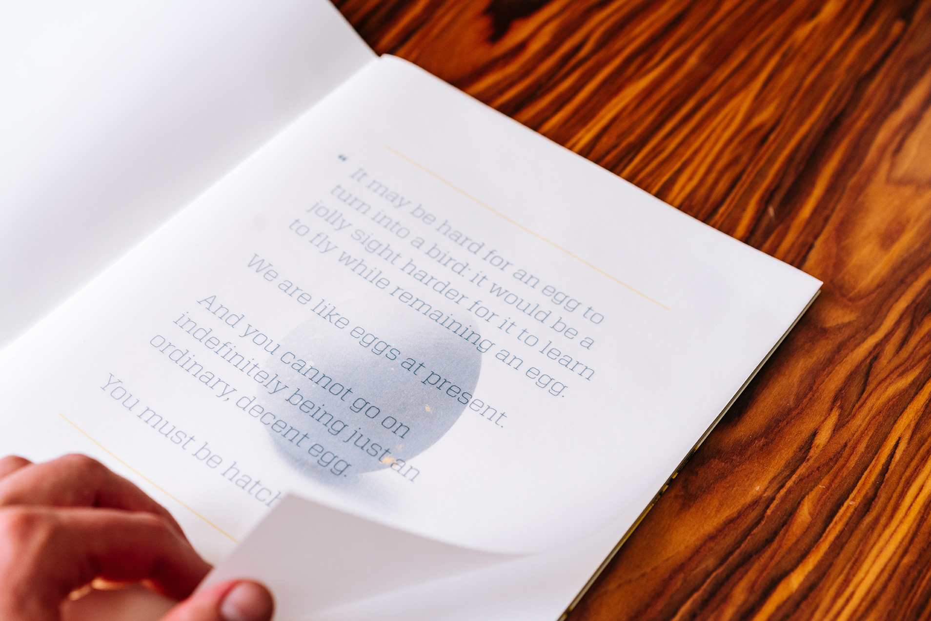 AAUM_Book-Egg1
